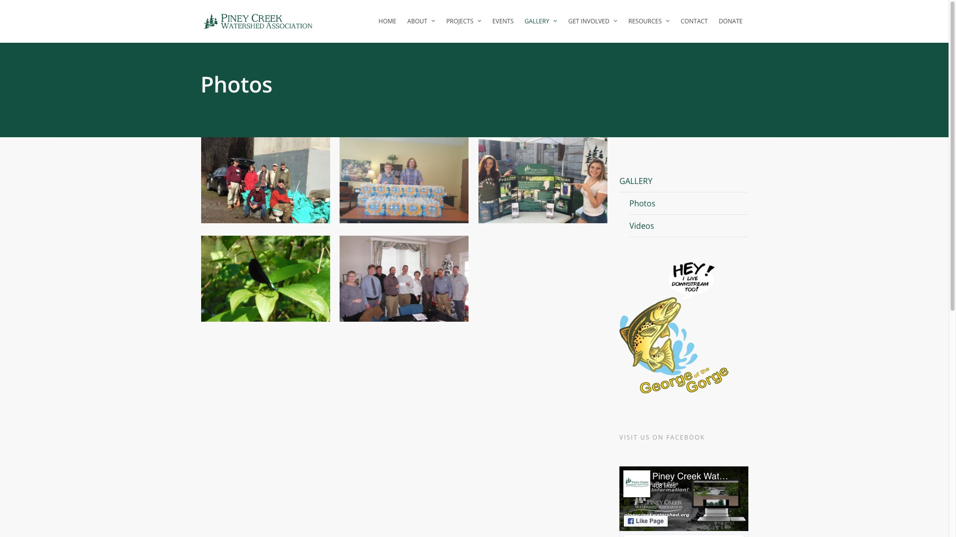 piney-creek-photos-web-design